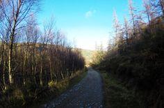 Photo from Glendalough Park (Ireland / Dublin) More info: http://www.liefdevoorreizen.nl/uitgelicht/muzikale-stedentrip-dublin