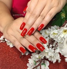 Red Manicure, Red Nails, Huge Biceps, Dragon Claw, Red Dragon, Favorite Things, Girls, Instagram, Red Glass