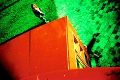 Malka Spigel/ Maya Newman Gallery 2004 Maya, Gallery, Roof Rack