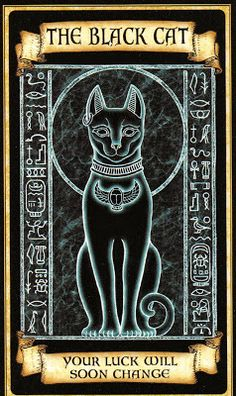 Black Cat Madame Endora's Fortune Cards