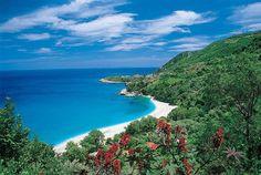 Paradise! Papa Nero beach. Pelion!!!