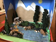 Taiga biome diorama Science Fair Projects, School Projects, Projects For Kids, Diy For Kids, Crafts For Kids, Science For Kids, Science And Nature, Activities For Kids, Biome Project