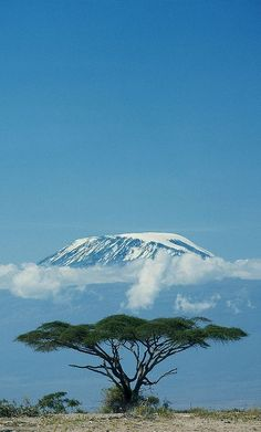 Mt. Kilimanjaro, Tanzania - the tallest peak in Africa. Climbed in September 2012.