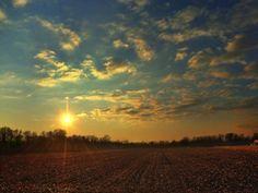 8)E le giornate di sole vincono su quelle di pioggia.