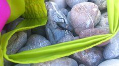 Сверчки (Gryllidae) крупные прыгающие прямокрылые насекомые, ареал обитания очень широк. Живут в норках или под камнями (как в данном случае на каменистом морском пляже было очень много). Стрекочут только самцы. Питаются растениями, иногда другими мелкими насекомыми.