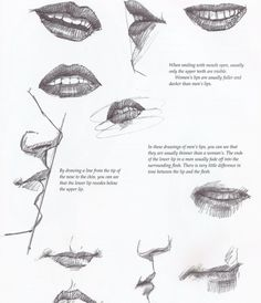 Drawing Tutorial Aligning the Mouth Profile View