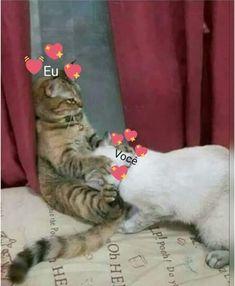 The post appeared first on Memes Apaixonados. Cartoon Memes, Funny Memes, Meme Template, Lesbian Love, Haha, Stickers, Humor, My Love, Creative