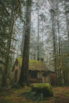 Hütte im Wald Kunstdruck Cabin In The Woods, Cottage In The Woods, Cozy Cottage, Forest Cabin, Forest House, Forest Cottage, Beautiful Homes, Beautiful Places, Beautiful Pictures
