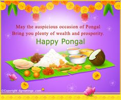 The 22 best pongal card images on pinterest greeting cards happy dgreetings may the auspicious occasion of pongal bring you plenty of wealth and prosperity wealthfestivalsgreeting cardsconcertsfestival party m4hsunfo