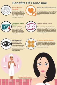 Benefits Of Carnosine Infographic