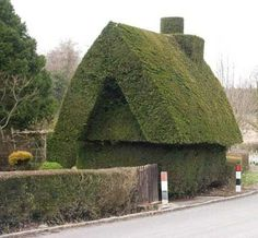 House topiary - there's always room for humour in the garden!