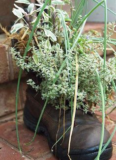 Click pic for 35 Container Gardeing Ideas - Old Boot | DIY Spring Garden Projects
