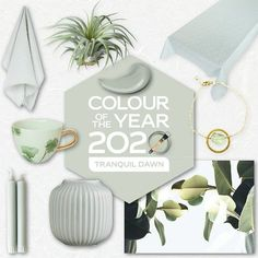 Tranquil Dawn Flexa kleur van het jaar 2020 trendkleur shopping inspiratie - Lilly is Love Room Colors, House Colors, Fundraiser Party, Living Room Green, New Years Decorations, Bathroom Trends, Color Of The Year, House Painting, Color Trends