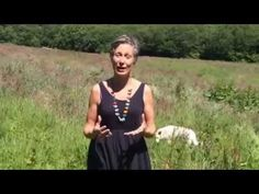 Tracing meridians with affirmations - YouTube
