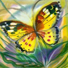 Le papillon jaune-rouge en vol Banque d'images