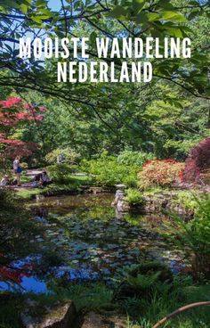 Mooiste herfst wandelingen in Nederland Most beautiful autumn walks in the Netherlands Ancient Greek Architecture, Chinese Architecture, Futuristic Architecture, Classical Architecture, Autumn Walks, Old Abandoned Houses, Vietnam Travel, Weekend Trips, Netherlands