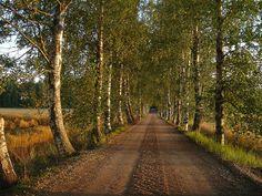 Somero, Finlandia
