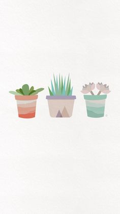 succulent-iphone-wallpaper-clementine-creative-1.jpg 1 242×2 208 пикс