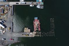 Contractor Reduces Marine Pile Driving Time with Controls Under Construction, Construction Companies, Fishing Boats, Custom Design, 3d, Business News, Nova Scotia, Idaho, Continue Reading