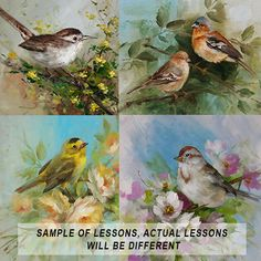 New Interactive Online Class Learn to paint birds!