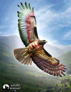 """Aquila non captat muscas.""/ A sas nem vadászik legyekre. Runic Writing, Fantasy World, Fantasy Art, Hungarian Tattoo, Hungary History, Red Raven, Biker Tattoos, Folk Fashion, World History"