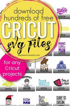 Cricut Air 2, Cricut Help, Cricut Vinyl, Free Fonts For Cricut, Cricut Svg Files Free, Free Svg Cut Files, Cricut Tutorials, Cricut Ideas, Create Quotes