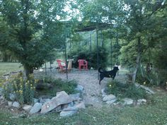 DIY trampoline recycling. My husband made me a gazebo out of a trampoline frame & then added the material for shade. Love it!
