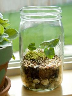 Find budget decorating ideas using Mason jars and old bottles rescued from the recycling bin.