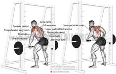 Use the Smith machine underhand Yates row to build your upper back and arms, and develop upper-body strength. Of course, you can also use an overhand grip. Good Back Workouts, Back Exercises, Gym Workouts, At Home Workouts, Workout Routines, Smith Machine Workout, Latissimus Dorsi, Tips Fitness, Fitness Nutrition