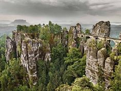 Germany's great outdoors: The Black Forest, wine country and Saxon Switzerland - Europe - Travel - The Independent
