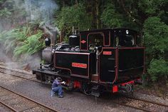 The Mount Lyell Abt Railway (West Coast Wilderness Railway). Engineer oils round no. 3 at Dubbil Barril station. Some say that this is an aboriginal name and others that it's named after a shotgun by someone with limited literacy skills.
