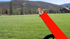 Don't Get Shot Out of a Cannon! Get Quality Afterschool Programming from Children's Choice.