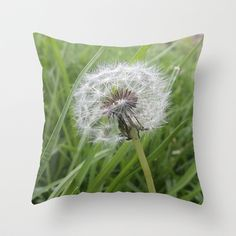 Dandelion Throw Pillow by Miguel Angel - $20.00