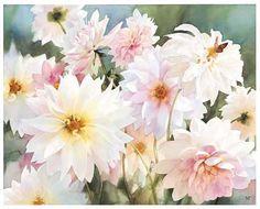 Pink Dahlias - Nancy Tichborne