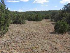 Vernon, Apache County, Arizona Land For Sale - 21.38 Acres
