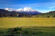 Volcan Calbuco - Reserva Nacional Llanquihue (Patagonia - Chile)
