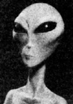 These people obviously haven't been to kentucky if they think this is an alien