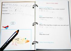 Birding with Kids-Birding notebook