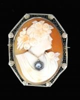 Antique Diamond Cameo Brooch/ Pendant Combo - This is awesome. You can wear this as a pendant or a brooch. It is an  antique cameo jewelry piece.