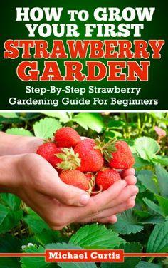 How to Grow Strawberries in Hanging Pots | WebNuggetz.com