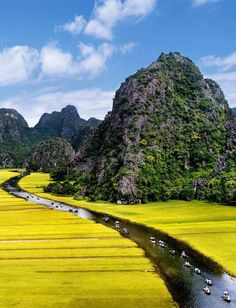 "Tam Coc_""Halong Bay on the rice field"" Biking is a great way to see this fascinating and visually stunning part of Vietnam. Exploring the beauty by bike via: http://www.activetravelvietnam.com/tour.php?op=detail=32"