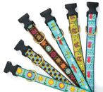 Up Country has some super cute dog collars..my dogs have had several