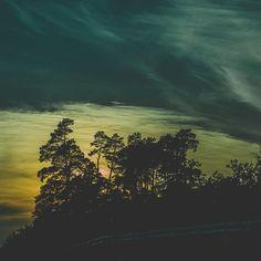 #natura #instagood #instagram #photography #wallpapers #discaver #instagood #nikon #life #blackandwhitephoto #sunset #sun #tree #landscape #nikond5500 #mywork #myphotography #photoofthewek #poland #summer