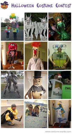 Homemade Costumes for Adults
