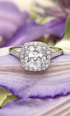 So much love. Sparkle. Cushion cut modern Edwardian engagement ring