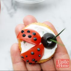Ladybug Appetizers Ladybug Appetizers Recipe… Fruit version, I'm thinking honey or orange zest flavor cream cheese, a blueberry, sliced strawberry wings and chocolate dots.Ladybug Appetizers - Taste of Home - - Ladybug Appetizers - Taste of HomeMar Ladybug Appetizers, Ladybug Snacks, Ladybug Cakes, Easter Appetizers, Ladybug Party, Cheese Appetizers, Cute Food, Yummy Food, Flavored Cream Cheeses