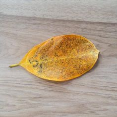 Leaf Art By Kerby Rosanes 2015 via /r/Art...