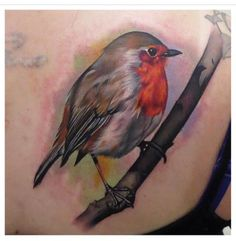 Fantastically Detailed Robin Tattoo By Phatt German