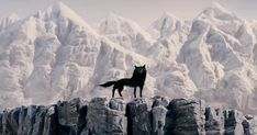 mister fox wolf - Buscar con Google