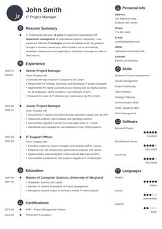 resume templates designed with career experts. Pick a simple, professional, basic, or creative resume template. Make your resume in no time. Online Resume Template, Infographic Resume Template, Free Professional Resume Template, Professional Resume Examples, Basic Resume, Good Resume Examples, Modern Resume Template, Creative Resume Templates, Cv Examples
